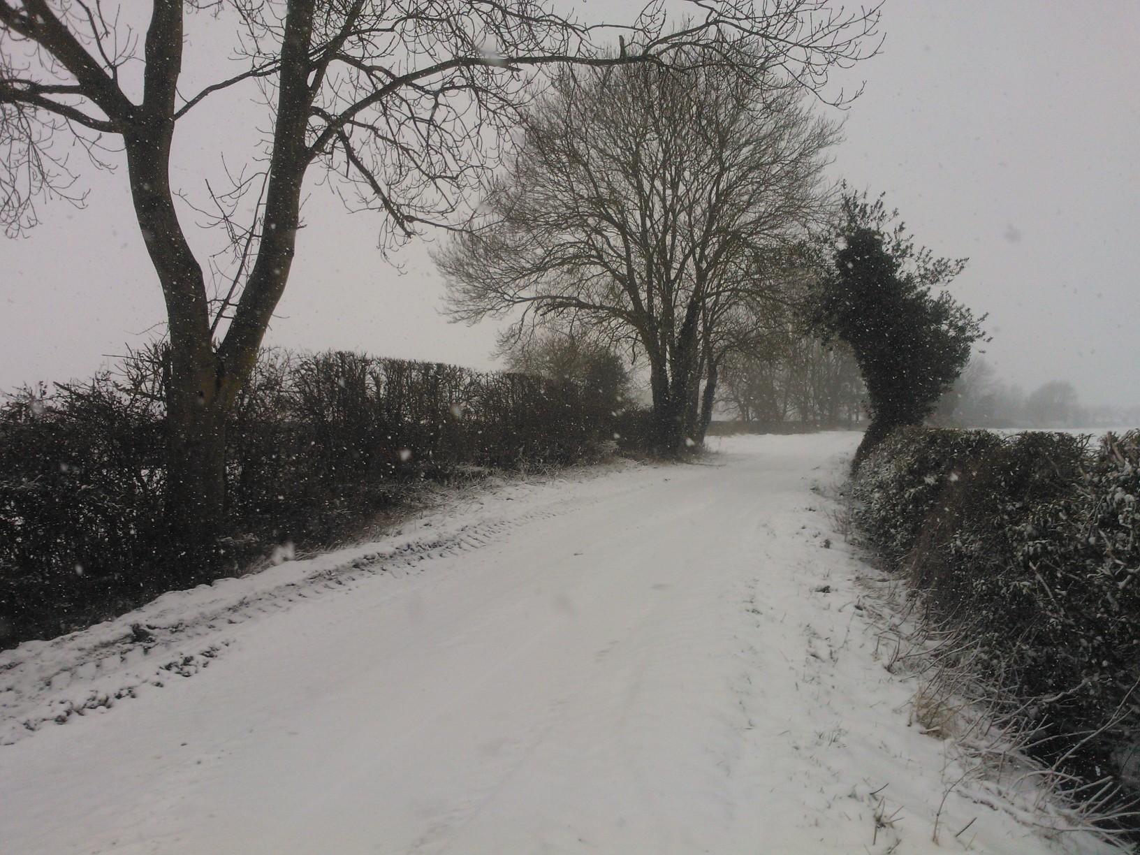 Snowy Lanes near Far Coton