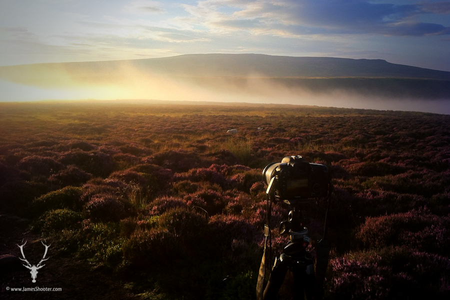 6am on the moors and I had this all to myself! © James Shooter 2013