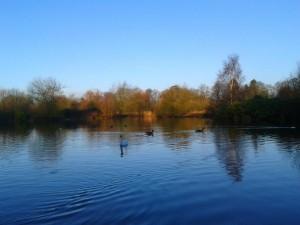 Wolseley Centre - The Lake