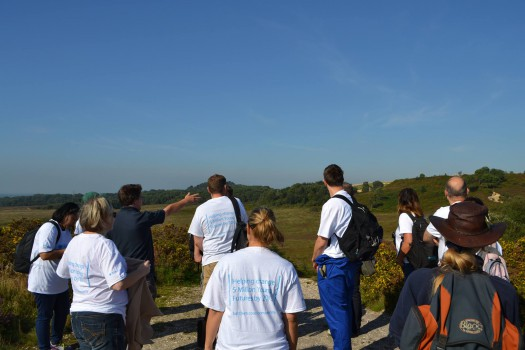 Volunteers out on a glorious day at Upton Heath